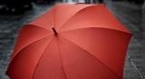 Сухо и комфортно: хитрый способ убрать мокрый зонт в автомобиле