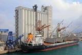 Украина за год экспортировала зерна на $6,4 млрд.