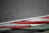 Відео забавного запливу качки на дощовому автодромі Сузука