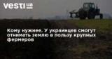 Кому нужнее. У украинцев смогут отнимать землю в пользу крупных фермеров